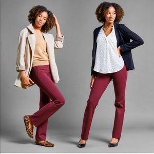 Dress Pant Yoga Pants Straight-Leg • Classic